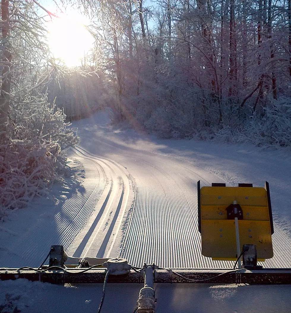 Forest Trail Grooming Image
